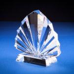 Peacock Award - 20pcck20